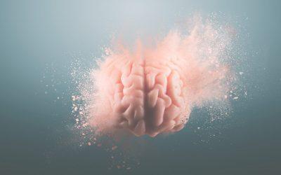 ¿Cómo crear experiencias sensoriales para conectarte con las emociones del cliente?